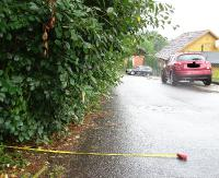 """INTERWENCJA: """"Rozrośnięty żywopłot utrudnia przejazd. Podczas wymijania wypada po prostu wjechać w krzaki"""" (ZDJĘCIA)"""