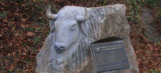BIESZCZADY: Wandale zdewastowali obelisk w Mucznem (ZDJĘCIA)