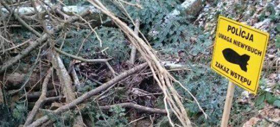 Niewybuch z czasów II wojny światowej znaleziony w lesie