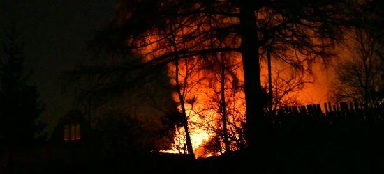 Pożar domu na Szklanej Górce. Straty na 350 tys. zł (ZDJĘCIA)