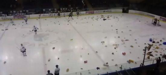 SANOK: Teddy Bear Toss. Miśki na Arenie! (VIDEO)