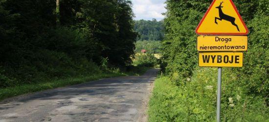 Te drogi zyskają szansę na remont. Zarząd powiatu zdecydował (ZDJĘCIA)