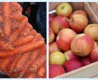 Jabłka i marchew dla mieszkańców gminy Zagórz