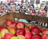 Jutro kolejna dostawa jabłek
