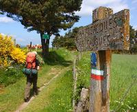 4000 km pieszo! Wielkie wyprawy w Jasiu Wędrowniczku