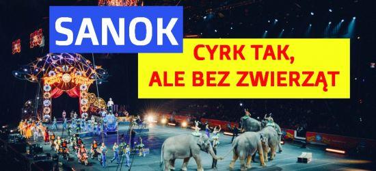 """""""Wywieśmy baner. Tradycyjna polska rodzina chodzi do cyrku""""! (VIDEO)"""
