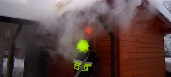 Pożar domku letniskowego, w którym znajdowała się sauna (VIDEO)