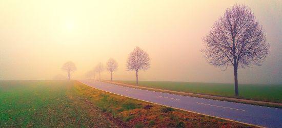 OSTRZEŻENIE METEO: Uwaga na gęste mgły