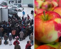 Sprawdź kiedy będą rozdawane jabłka dla sanoczan i mieszkańców regionu