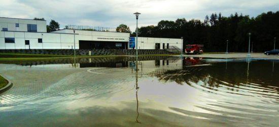 Jest opinia biegłego w sprawie zalanych basenów. Prokurator już wie, dlaczego do tego doszło