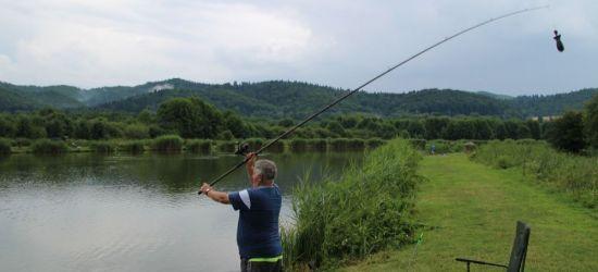 """Maraton wędkarski na stawie """"Sosenki"""". Złowiono 65 kg ryb! (FILM, ZDJĘCIA)"""