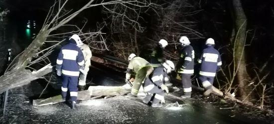 Zerwane dachy, drzewa na drogach, uszkodzone słupy (ZDJĘCIA)