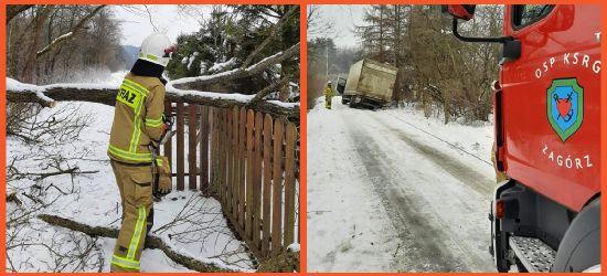 ZAGÓRZ: Złamane drzewo i pojazd na oblodzonym poboczu (ZDJĘCIA)