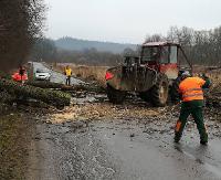 UWAGA KIEROWCY! Drogowcy usuwają drzewa. Są utrudnienia w ruchu (ZDJĘCIA)