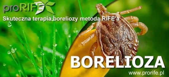 Plazmoterapia metodą Rif'e'a w Krośnie – postęp w leczeniu boreliozy