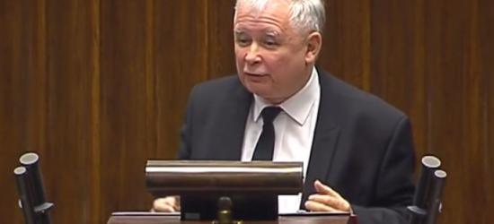 KONTROWERSJE: Co tak naprawdę powiedział Jarosław Kaczyński. Wystąpienie prezesa PiS podczas sejmowej debaty nt. imigrantów