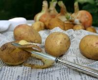 Kartoflane wariacje kulinarne w Falejówce