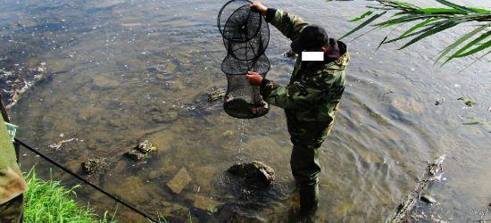 """Jesienne zarybianie łowisk i """"zapominalscy"""" wędkarze (FOTO)"""