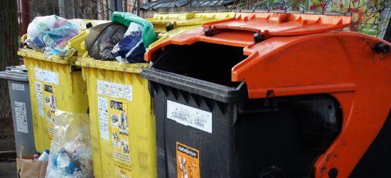 SANOK. Władze miasta szykują zmiany w opłatach śmieciowych. Będziemy płacić więcej czy mniej? (ANKIETA)