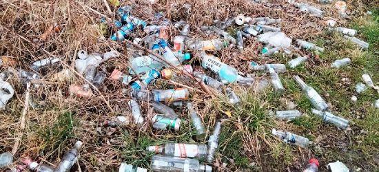 Mnóstwo śmieci na brzegu Sanu. Nieznane substancje w wodzie (ZDJĘCIA)