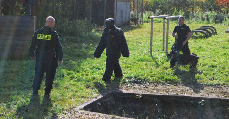Policyjne czworonogi przechodzą egzaminy (FOTO)