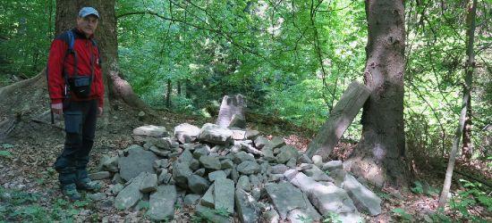 Pamiątka leśnej tragedii sprzed wieku (FILM, ZDJĘCIA)