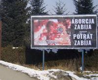 Zdjęcia zakrwawionych płodów na ulicach Krosna. Chcą uświadamiać też Słowaków, że aborcja jest morderstwem (ZDJĘCIA)