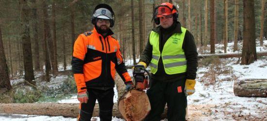 Kurs drwala dla uczniów Technikum Leśnego