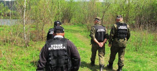 SANOK: Kłusujący oficer policji i wędkarz łowiący na… 13 wędek. Z życia SSR (ZDJĘCIA)