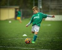 NASZ PATRONAT: Mikołajkowy Turniej Piłki Nożnej. Dziewięć drużyn powalczy o Puchar Sokoła