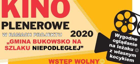 Kino plenerowe w gminie Bukowsko. Dwa filmy historyczne
