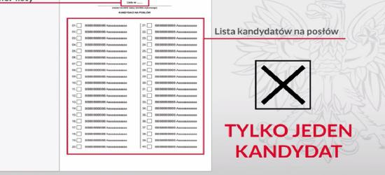 25 października wybory parlamentarne. Jak głosować? (FILM)