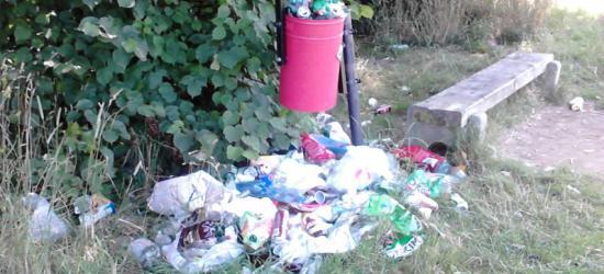 INTERWENCJA: Błonie toną w śmieciach? Syf wokół kosza na śmieci tuż przy wypoczywających (ZDJĘCIA)