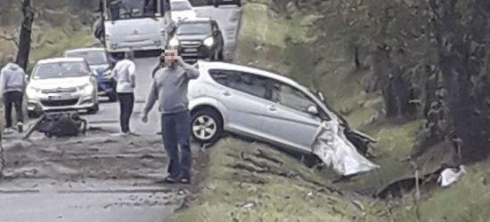 Młody kierowca uderzył w drzewo. Jechał z promilami (ZDJĘCIE)