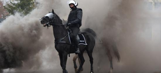 """Policyjne konie galopem """"przeszły"""" egzamin (FOTO)"""