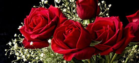 Wyjątkowe święto Płci Pięknej. Wszystkim Kobietom składamy serdeczne życzenia!